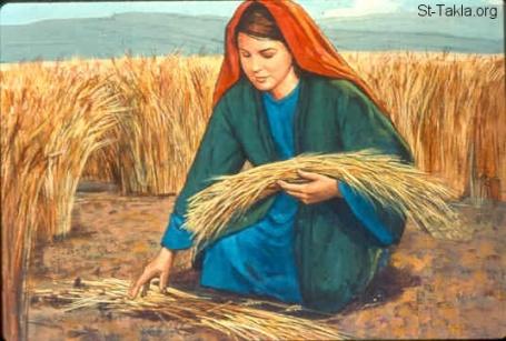 www-st-takla-org-bible-slides-ruth-694