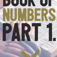The Book of Numbers. Part 1.