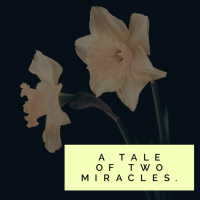LOVE is: A tale of two miracles.