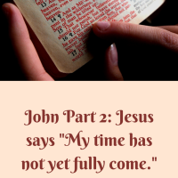 "John part 2: Jesus says ""My time has not yet fully come."""